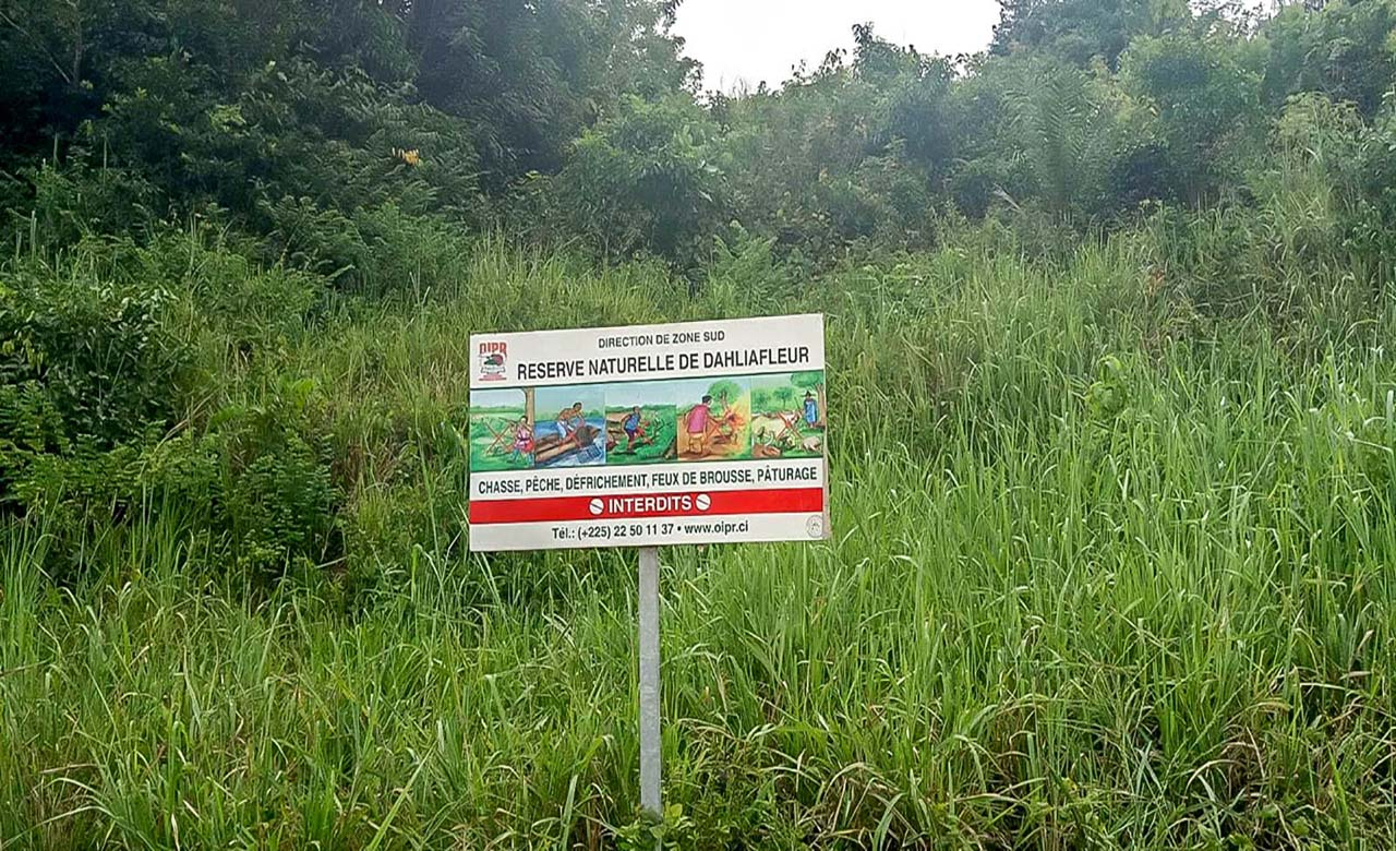 Reserve naturelle de Dahliafleur