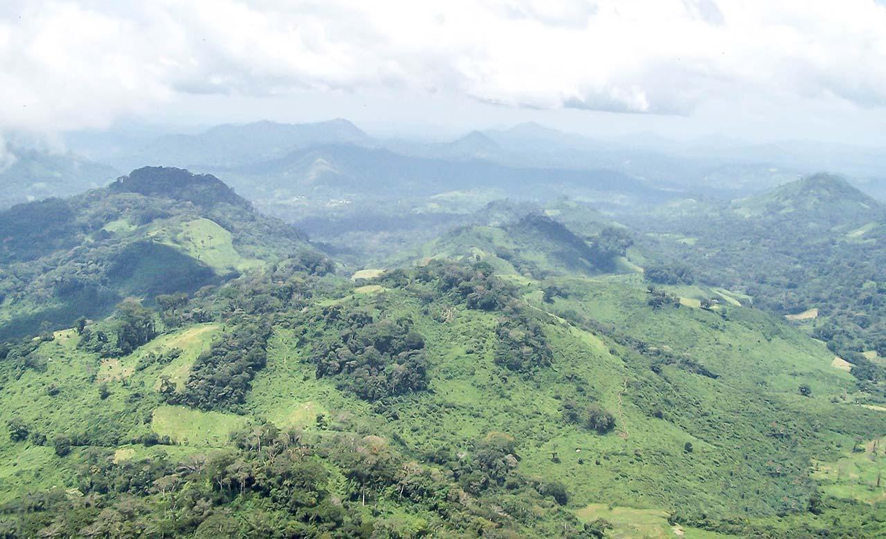 Le Mont Tonkoui