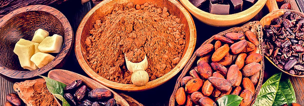 Cacao en Côte d'Ivoire