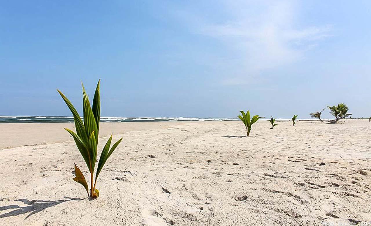 Belle plage d'Assinie